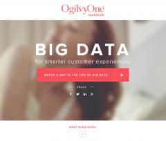 A Day in Big Data: analisi del sito e della campagna di comunicazione video
