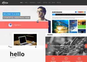 10 temi Wordpress Responsive